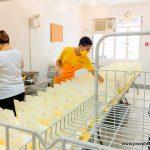 Covid-19 Relief: Food Preparation